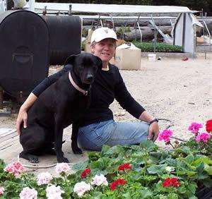 Andrea Capron at Deer Cap Greenhouses